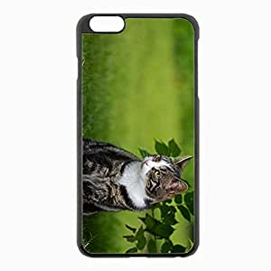 iPhone 6 Plus Black Hardshell Case 5.5inch - grass sit Desin Images Protector Back Cover