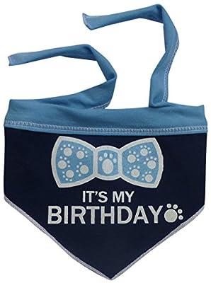 I See Spot It's My Birthday Pet Bandana Scarf in Navy