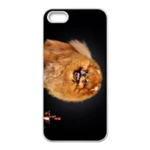 Spitz And Coffe Hight Quality Plastic Case for Iphone 5s by icecream design
