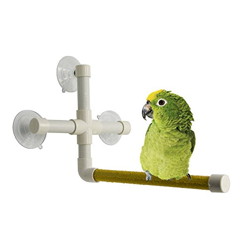 Bird Shower Perch - PINCHUANG Portable Suction Cup Shower Perch Stand for Small Medium Large Size Parrot Macaw Cockatoo African Greys Budgies Parakeet Cockatiel Conure Lovebirds Bath Perch Toy