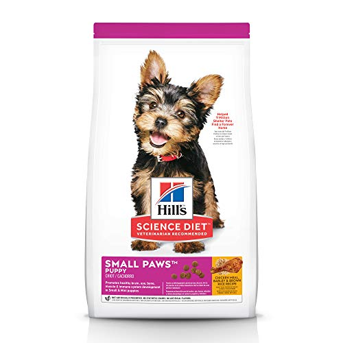 Hill's Science Diet Dry Dog Food, Puppy, Small Paws, Chicken Meal, Barley & Brown Rice Recipe, 15.5 LB Bag (Best Puppy Food For Toy Breeds)