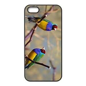 Chloebiagouldiae Hight Quality Plastic Case for Iphone 5s
