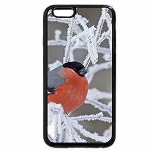 iPhone 6S Plus Case, iPhone 6 Plus Case, COLOURS OF NATURE