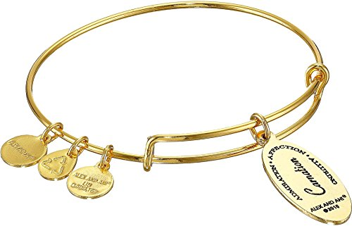Alex and Ani Love Spell Carnation Gold-Tone Expandable Wire Bangle Bracelet by Alex and Ani (Image #1)'