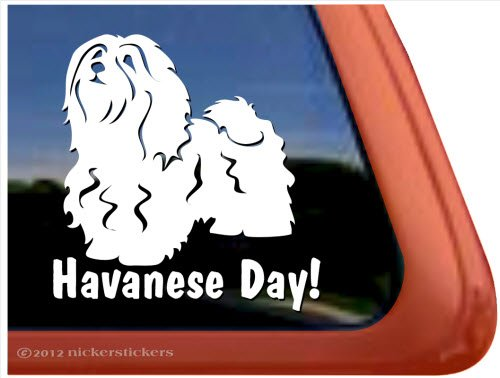 Havanese Day! Vinyl Window Auto Decal Sticker