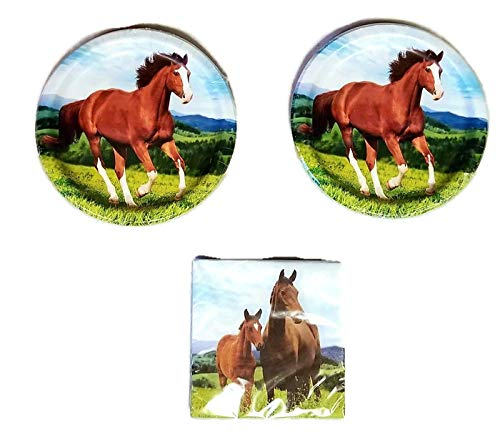 Horse and Pony Party Bundle 9'' Plates (16) Napkins (16)