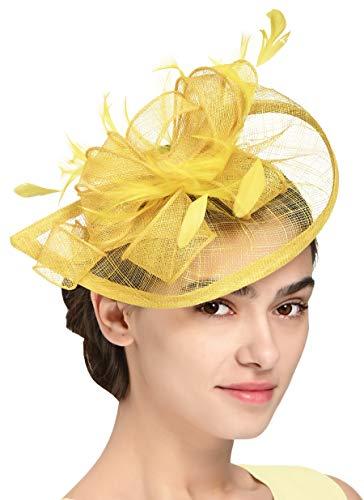 Fascinators Hat for Women Kentucky Derby Headband Wedding Mesh Feathers Tea Party Hair Clip -