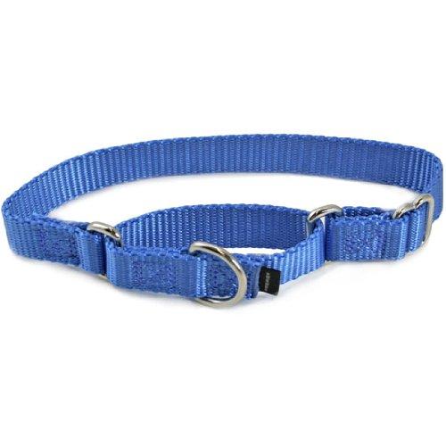 """Premier Collar, 1"""" Large, Cadet Blue"""