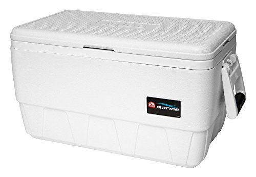MarineUltra 36QT Cooler ()