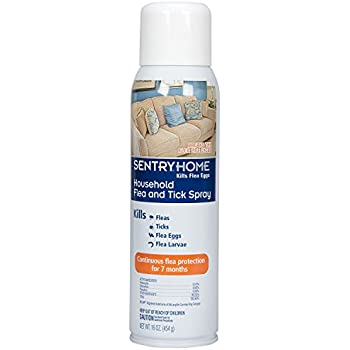 Amazon Com Virbac Knockout E S Area Treatment Carpet