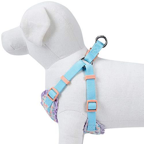 Animal De Bleuet 5 Modèles Printemps Doux Et Confortable Fait Pas Gilet De Harnais Pour Chien Chiot Maille Pull Bien Floral - Lavande