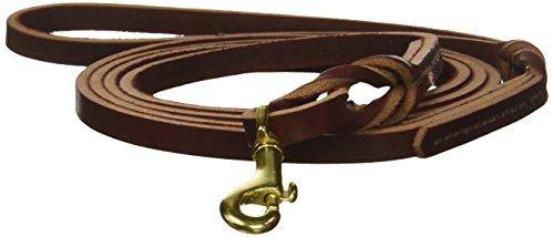 Cherrybrook Latigo Leather Braided Twist Lead for Pets, 3/8