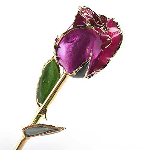 (M Dream Romantic Gifts for Her, Long Stem Trimmed 24K Gold Dipped Real Rose Purple 11 Inches Set of 1,Best Gift for Valentine's Day, Mother's Day, Anniversary, Birthday, Christmas)