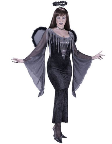Fallen Angel Adult Costume - Small/Medium