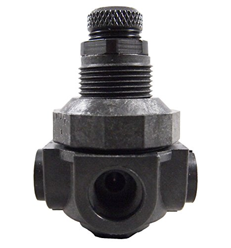 (Watts P60M1 Pressure Regulator 2 way 1/4