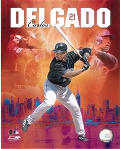 (2006 New York Mets 8x10 PHOTO FILE PORTRAIT PLUS CARLOS)