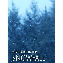 Snowfall: Winter Meditation
