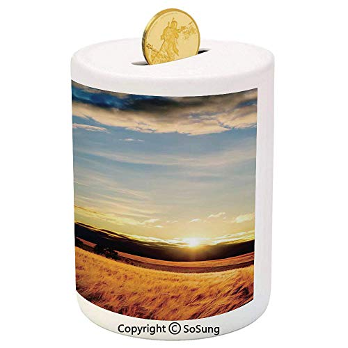 Farm House Decor Ceramic Piggy Bank,Gold Barley in Sunset Sunbeams on Flora Shadows of Clouds Rural Field Print 3D Printed Ceramic Coin Bank Money Box for Kids & Adults,Yellow White Blue
