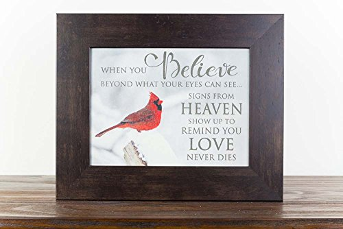 Summer Snow When Believe Beyond What Your Eyes Can See Heaven Cardinal Religious Sympathy Art Decor 13x16 - Eye Picture