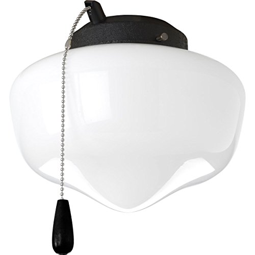 Progress Lighting P2601-80 1-Light Kit with White Glass for Indoor/Outdoor Use, Forged Black