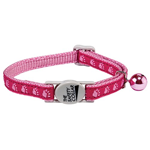 Casual Kitty Meow Town Two-Tone Pawprint Cat Collar, 3/8-Inch, (Meow Town Kitty)