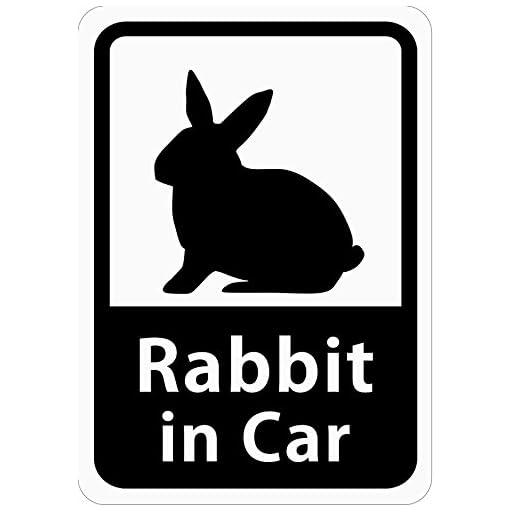 Rabbit in Car 「うさぎ」 車用ステッカー (マグネット) (ホワイト) s10
