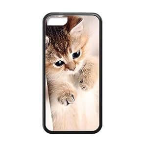 Cute Hairy Cat Black Phone Case for Iphone 5C