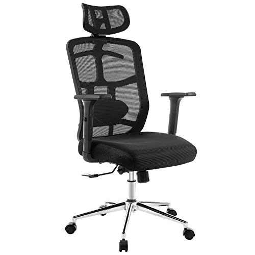 TOPSKY Mesh Computer Office Chair Ergonomic Design Chair Skeletal Back Synchronous Mechanism(Black) Hanger function TOPSKY