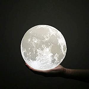 HaloVa Night Light 3D Printing Moon Lamp, Lunar USB Charging Night Light, Touch Control Brightness Two Tone, 7.8 Inch