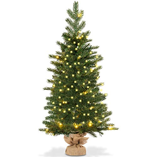 Outdoor Small Christmas Tree With Lights in US - 1