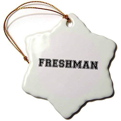 MurielJerome Freshman High School College University Fresher Preppy Black Text Christmas Ornaments Funny Novelty Porcelain Hanging