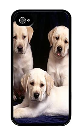 coque de iphone 4 labrador