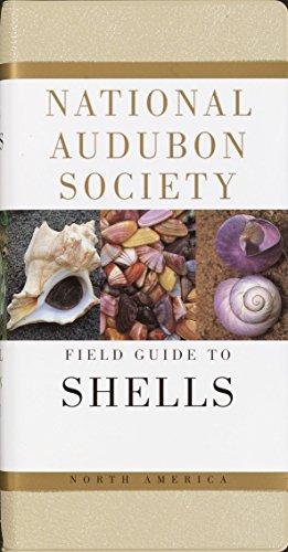 (National Audubon Society Field Guide to North American Seashells)