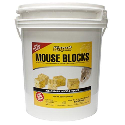 Kaput Mouse Blocks - 22lb. Bucket Kill Mouse 71225 by Kaput