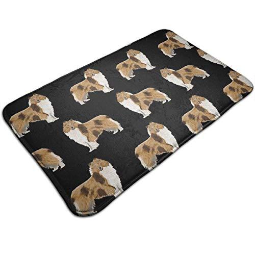 - BestgoodsLTD Anti-Slip Memory Foam Tub-Shower Bath Rug Rough Collie Dog Home Decor Shaggy Rugs Indoor & Outdoor Entrance Mat, Machine-Washable/Anti Fatigue Doormat for Hotel