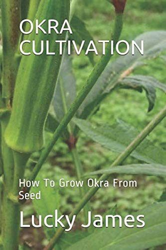OKRA CULTIVATION: How To Grow Okra From Seed