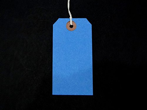 Ivy Blue Strung Tags 120mm x 60mm Luggage Labels Tags Tickets Tie On String Labels by Ivy ()