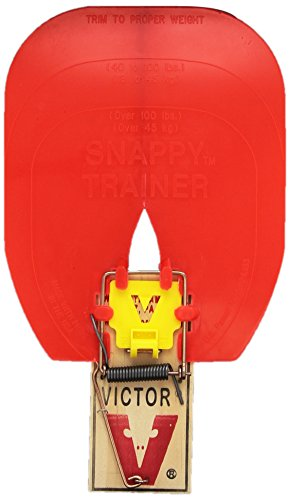 Hueter Toledo Snappy Trainer (2 Pack)