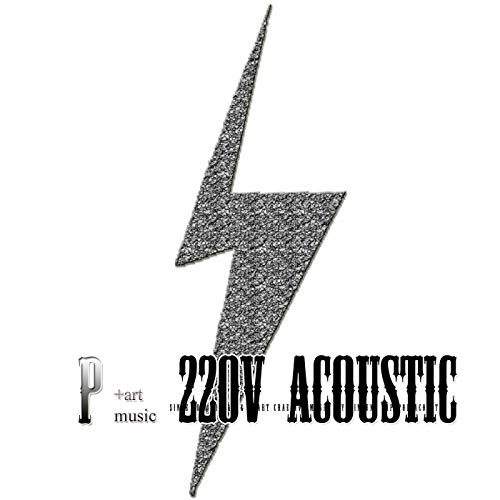 220v 어쿠스틱 in p:art