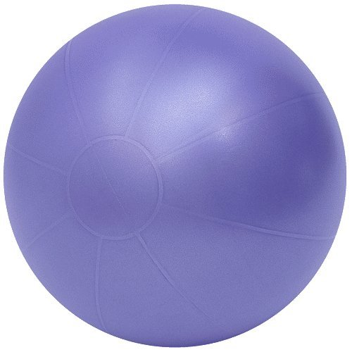 Cheap 26″ Anti-burst Swiss Pro Ball, Purple