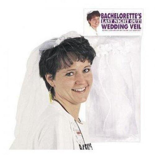 Bachelorette Wedding Veil