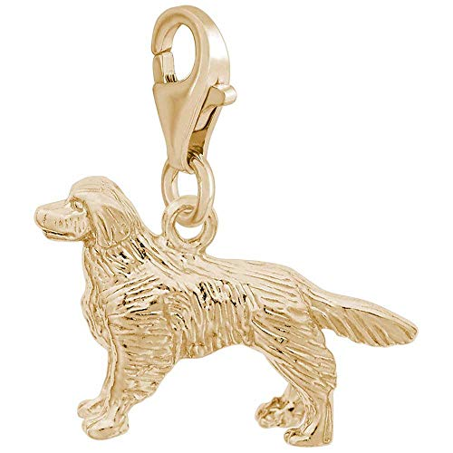 - Rembrandt Charms Golden Retriever Charm with Lobster Clasp, Gold Plated Silver