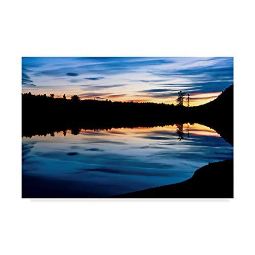 (Trademark Fine Art Anthony Paladino 'silhouetted Landscape' Canvas Art)