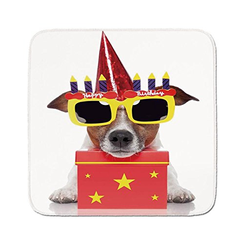 (Cozy Seat Protector Pads Cushion Area Rug,Birthday Decorations for Kids,Party Dog with Sunglasses and Cone Hat Boxes Stars Image,Red and Yellow,Easy to Use on Any Surface)