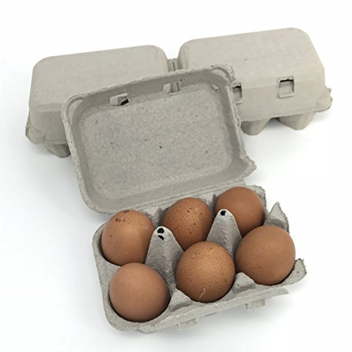 Split Pulp Egg Cartons, Blank Flattop Style Carton, 6-Egg or 12-Egg, 100% Recyclable, Set of 12 ()