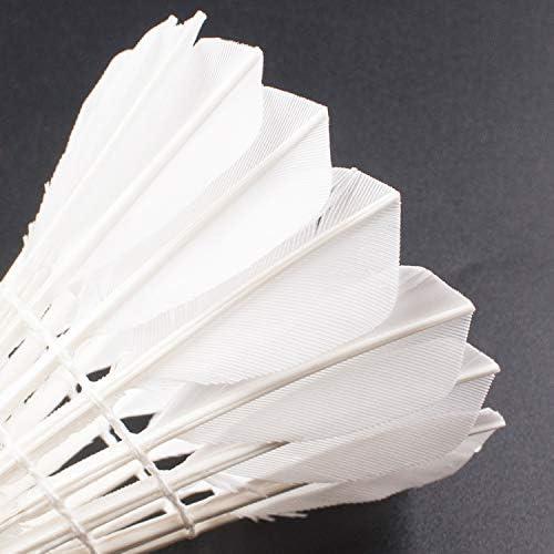Amazon.com: Senston - Plumas de bádminton A30 de plumas de ...
