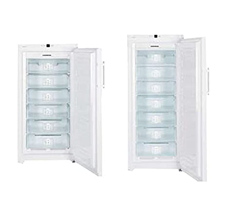 Liebherr 670284 congelador armario, 20 °C, con ventilación, 356 L ...