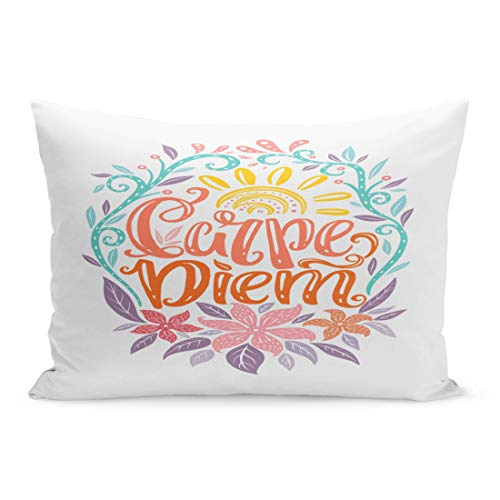 Semtomn Throw Pillow Covers Carpe Diem Lettering Seize The Day Unique Creative Typographic Tattoo Popular Latin Phrase Pillow Case Cushion Cover Lumbar Pillowcase for Couch Sofa 20 x 26 inchs