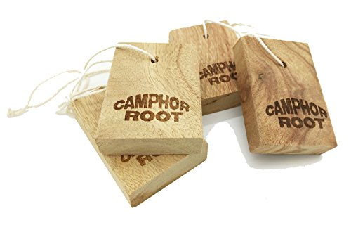 moth-repellent-old-cinnamomun-camphora-root-blocks-moth-protection-for-clothes-closets-and-drawer-st