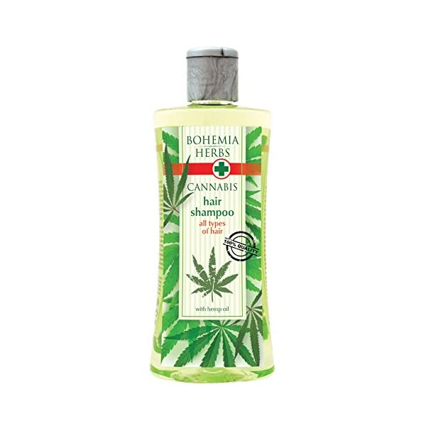 Cannabis Shampoo with Hemp Oil 250 ml – Original Pure Natural Cosmetics